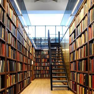 Библиотеки Родников